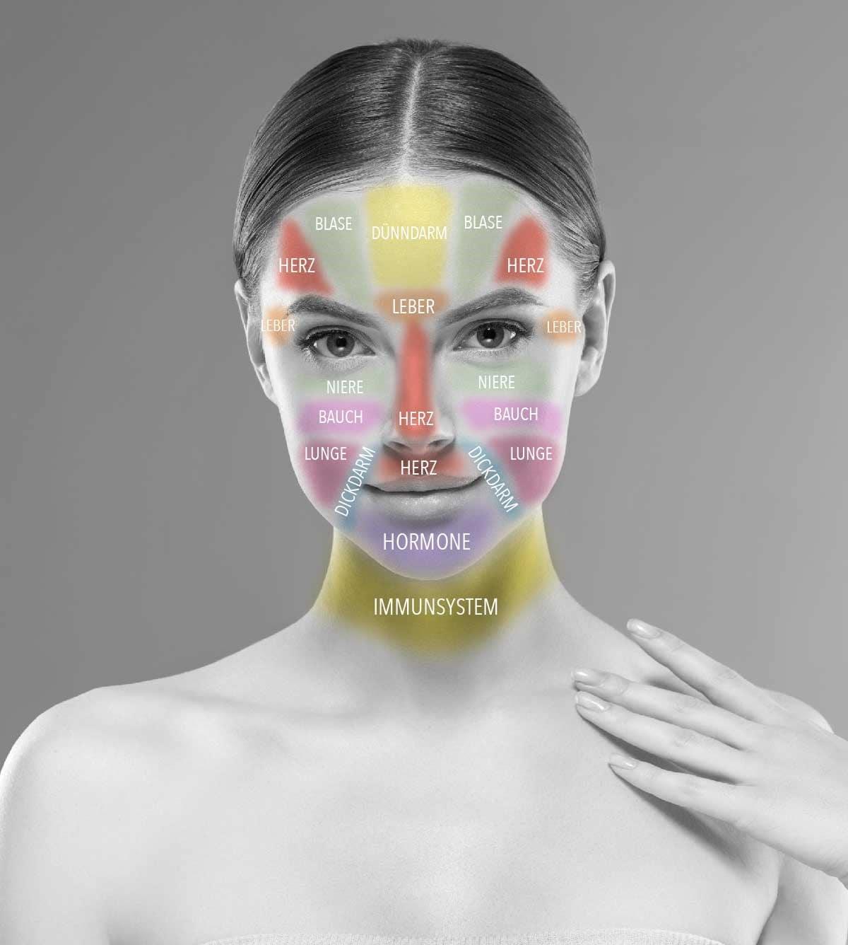 Face Mapping Hilfe bei unreiner Haut von dermaceutical